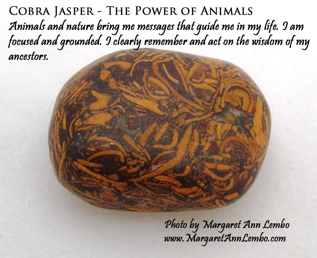 Cobra Jasper