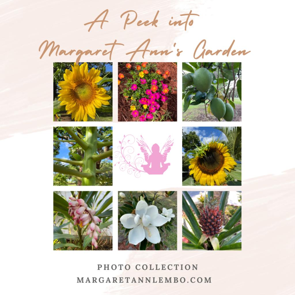 A Peek into Margaret Ann's Garden